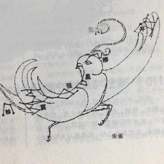 """""""朱雀悲泣""""是什么意思?"""