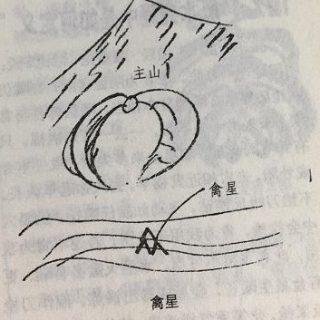 """风水学中的""""禽星""""是生气聚厚的标志吗?"""