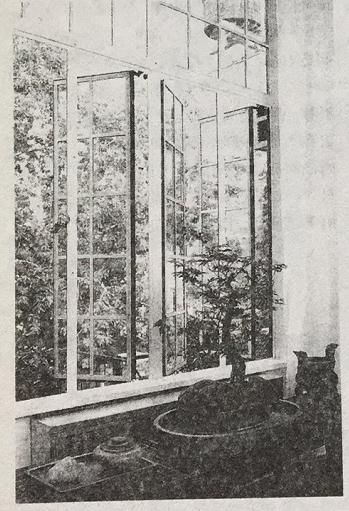 窗户在家居风水中有什么作用?