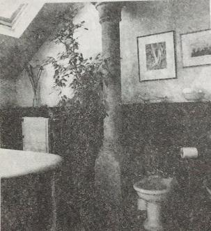 卫生间内适合摆设绿色植物吗?