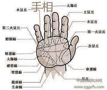 手相沒有感情线有哪些喻意?